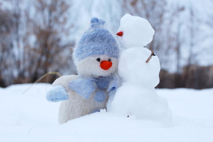 Vortrag zu TCM im Winter